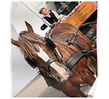 Wagon Horse Poster
