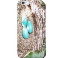 Robbin Egg Case iPhone Case/Skin