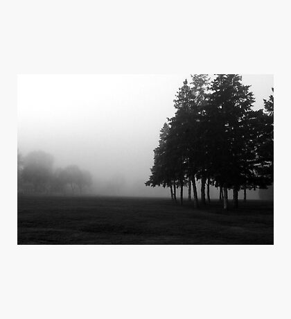 lonely walk through the park Photographic Print