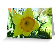 Bring on Spring Greeting Card
