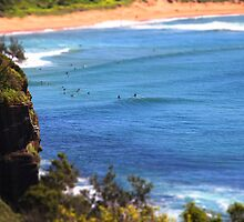 Avalon Beach in Miniature by Dannel Sargent