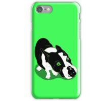 Mr Bull Terrier Green iPhone Case/Skin