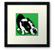 Mr Bull Terrier Green Framed Print