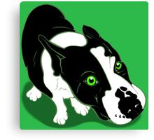 Mr Bull Terrier Green Canvas Print