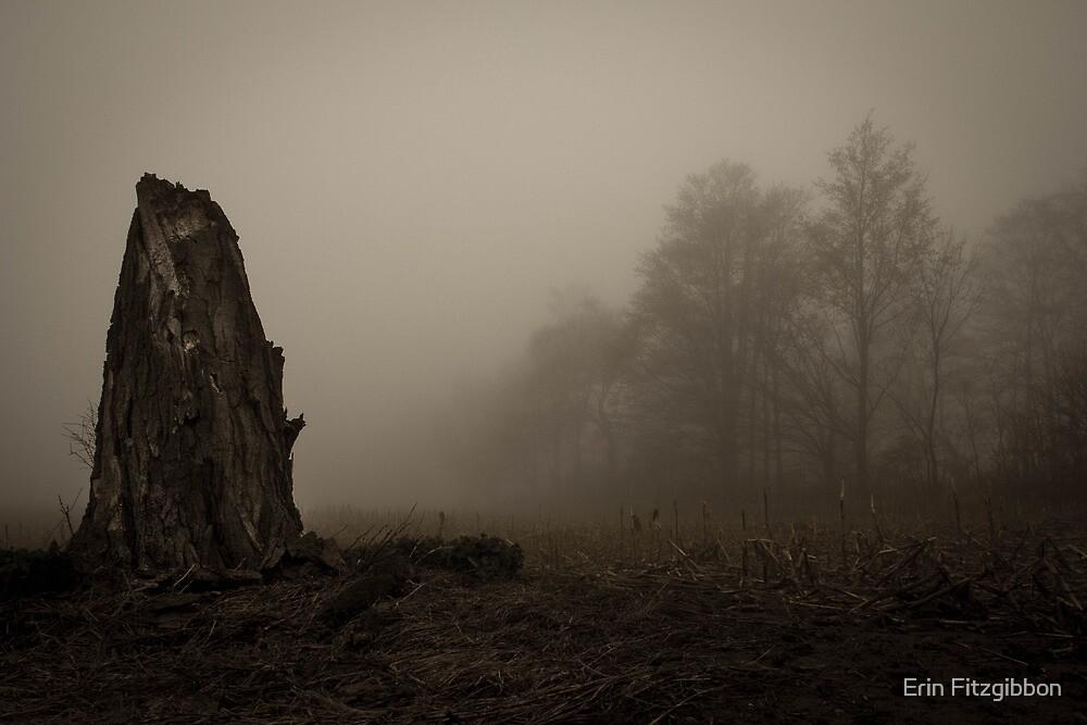 old dead tree  by Erin Fitzgibbon