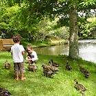 feeding the ducks by Anne Scantlebury
