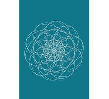 Ornament – Morphing Blossom Photographic Print
