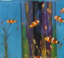 Clown Fish Sticker