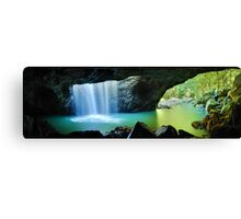 Natural Bridge, Springbrook National Park, Queensland, Australia Canvas Print