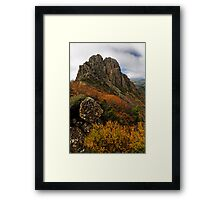 The Horn Framed Print