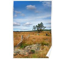 Rustic Rurality ~ Ulandra Reserve NSW Poster