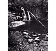 """Upper Lilydale Falls"" ∞ Lilydale, Tasmania - Australia Photographic Print"