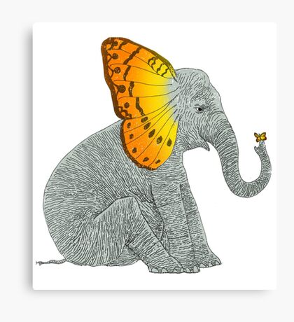 Elephant and Butterfly Canvas Print