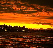 Winter's Evening Sunset, Sydney Harbour by xangac