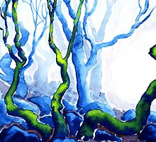 Trees in Padley Gorge, Derbyshire. by WaterGardens
