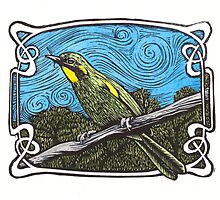 Yellow Throated Honey Eater by SnakeArtist
