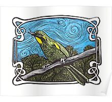 Yellow Throated Honey Eater Poster