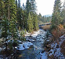 Snowy Mountain Stream by DarthIndy