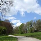 Roundhay Park (Leeds) by horacecornflake