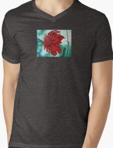 Red in Fury Mens V-Neck T-Shirt