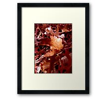 Redder than... Framed Print