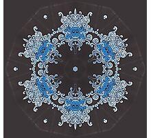 Ice Bison Photographic Print