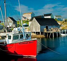 Harbour Mist in Peggy's Cove by Randall Nyhof