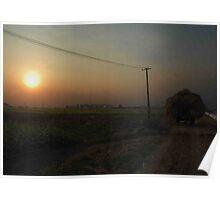 sunset - bullock cart Poster