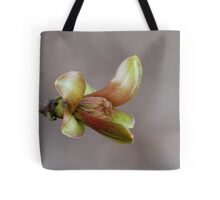 Waking to the Dawn Tote Bag