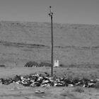 Karoo Pole by John Brian Dawes
