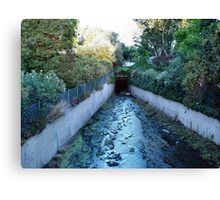 The Way of the Water  Canvas Print