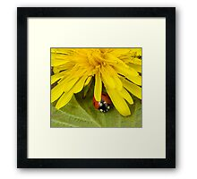 Just to say hello Framed Print