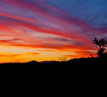 Arizona Sunset by K D Graves Photography