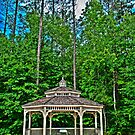 HDR - Gazebo at Saluda Shoals by Doug Greenwald