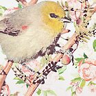 Vintage Bird and Flowers by GirlyGirl