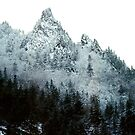 Midwinter Dixville Notch by bengel