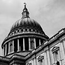 St Pauls Cathedral by Florem