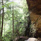 Ash Cave Landscape by Jory Authement