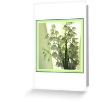 Mellow Lily Of The Valley Greeting Card
