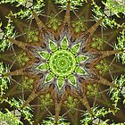 Kaleidoscope by essenceoview