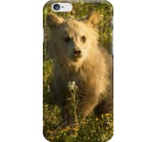 Grizzly Cub-Signed-3966 iPhone Case/Skin