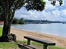 Take a seat and have a rest, Paihia, Bay of Islands..........! by Roy  Massicks
