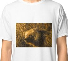 Grizzly Sow And Cub-Signed-4861 Classic T-Shirt