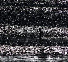 On a Shimmering Sea by Noel Elliot