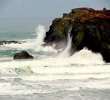 On The Rocks....Cheers...Bandon, Oregon by trueblvr