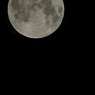 Super Moon 2012 by Timothy L. Gernert