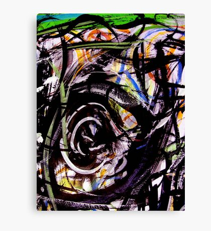 into an eye... Canvas Print