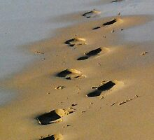 Ghost on the beach by Heather Samsa