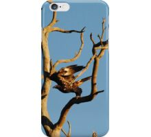Eagle on the edge - Wollert, Victoria iPhone Case/Skin