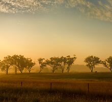 Smokey Sunset #3 ~ Cootamundra (NSW) by Rosalie Dale